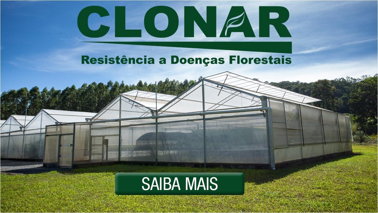 Clonar