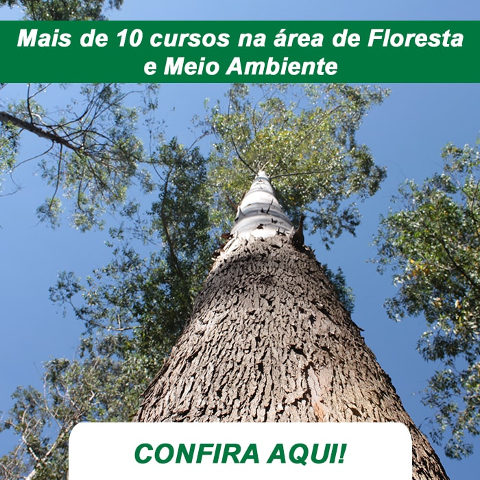 Mais de 10 Cursos na área de Floresta e Meio Ambiente