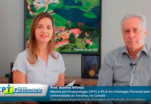 Clonagem de Eucalipto - Entrevista Exclusiva com o Professor Acelino Alfenas