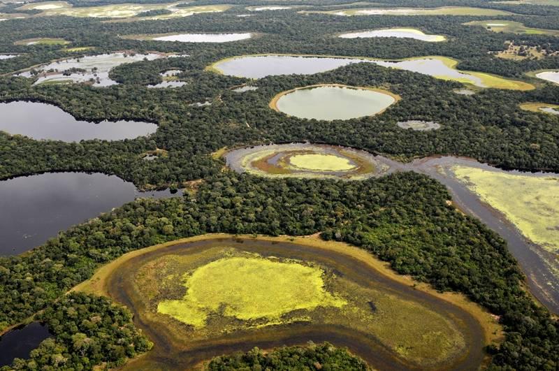 Bioma do Pantanal está em alto risco