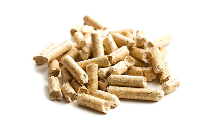 Empresa do sul do país deseja expandir sua produção de pellets
