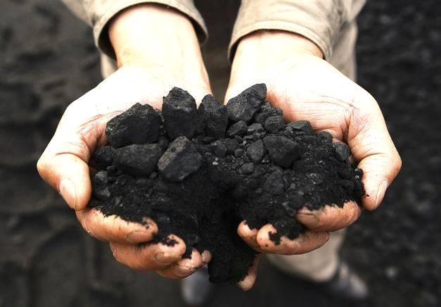 A importância do uso do carvão no solo