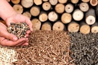 Os pellets e a sustentabilidade