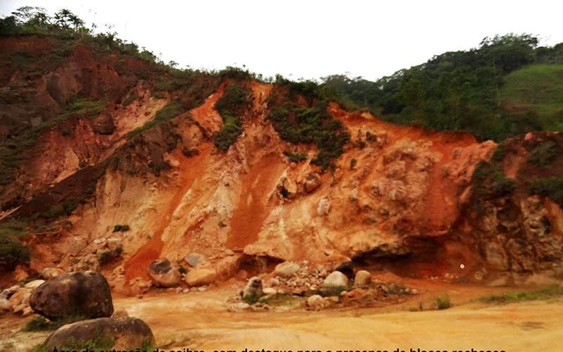Treinamento sobre restauração florestal será realizado em agosto