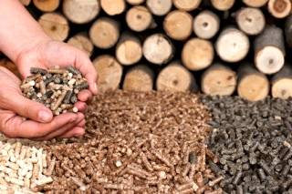 Brasil é o principal produtor de biomassa para a matriz energética do planeta