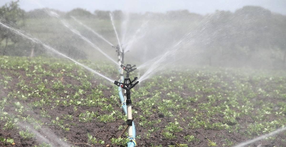 Você vai aprender na prática a aumentar os seus lucros com irrigação!